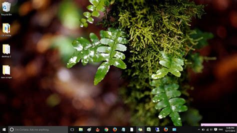 download nature themes for windows 10 16 best windows 10 themes to brim desktop with beauty