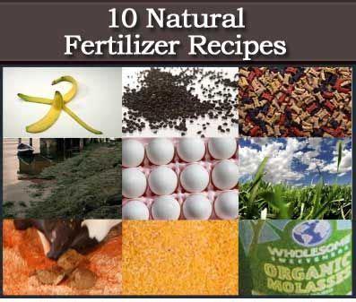 natural organic fertilizer recipes gardening