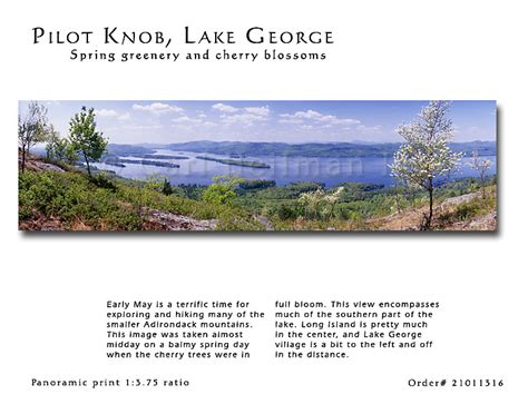 Pilot Knob Lake George by Lake George Photos Panoramas Gifts Murals And