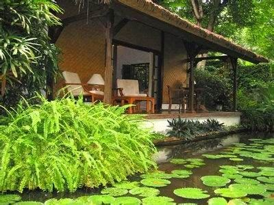 omah ilmoe  jenis tanaman rumah berdasarkan manfaatnya