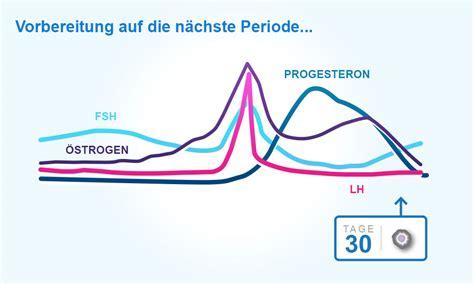 wann sind die fruchtbarsten tage nach der periode den weiblichen zyklus eisprung und die periode verstehen