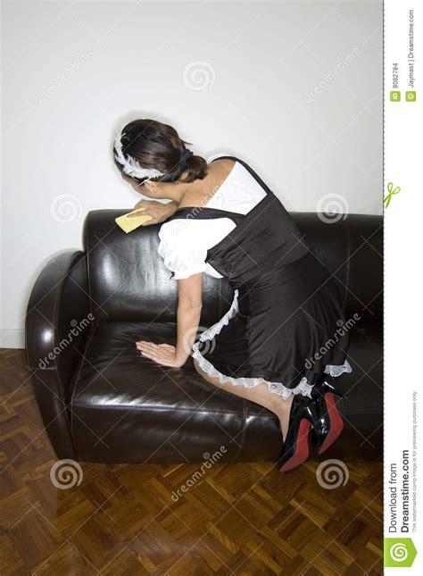 cleaning a leather couch french maid cleaning stock images image 8082784