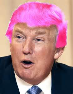 donald hair color donald hair color