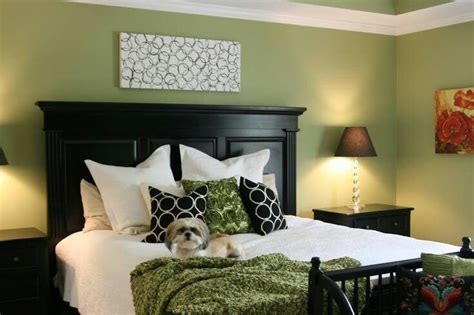 Wall Paint Ideas 5442 by 25 Best Ideas About Olive Green Bedrooms On