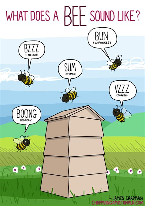 what sounds do animals make in different languages bee