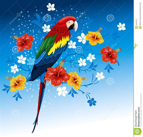 Asos10524 Floral Bird Tropical Blue White S M Import Chiffon Dress parrot and tropical flowers stock vector image 23431977
