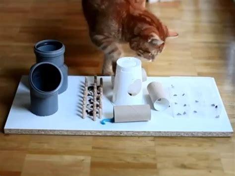 bettr ckwand selbst gemacht fummelbrett intelligenzspielzeug f 252 r die katze