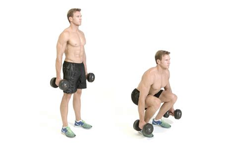 dumbbell bench squat squat dumbbell www pixshark com images galleries with a bite