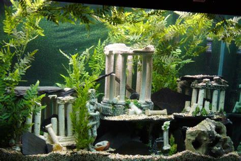 Aquarium Dekorieren Ideen by Deko F 252 R Aquarium Selber Machen 30 Kreative Ideen