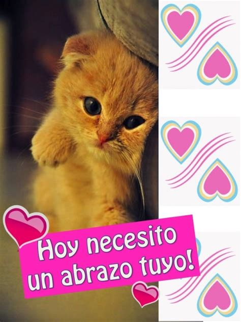 imagenes de un hola tuyo hoy necesito un abrazo tuyo tarjetitas cari 241 o gatitos