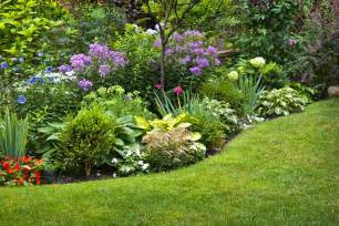 Flowers For Gardens Perennials When To Divide Perennial Flowers Growing Together With