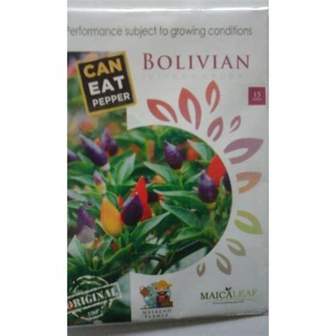 Jual Bibit Cabe Bolivian Rainbow jual benih cabe hias pelangi