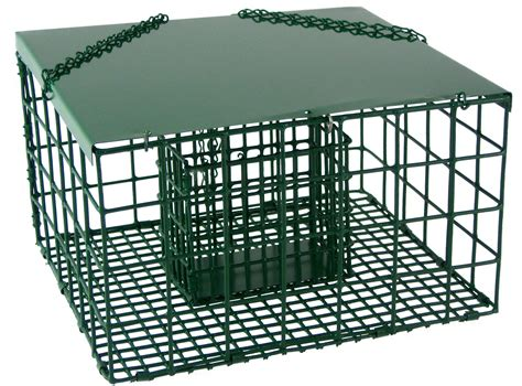 Songbird essentials squirrel resistant palace suet bird feeder