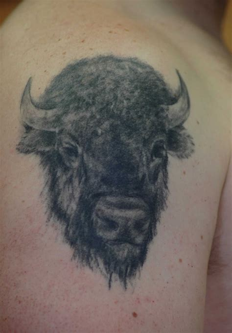 tribal buffalo tattoos buffalo tattoos buffalo tattoos