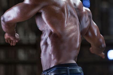anatomy of the muscle of the back human anatomy human anatomy