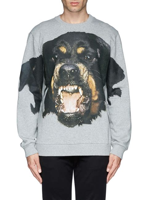 rottweiler clothing givenchy rottweiler print sweatshirt in gray for lyst