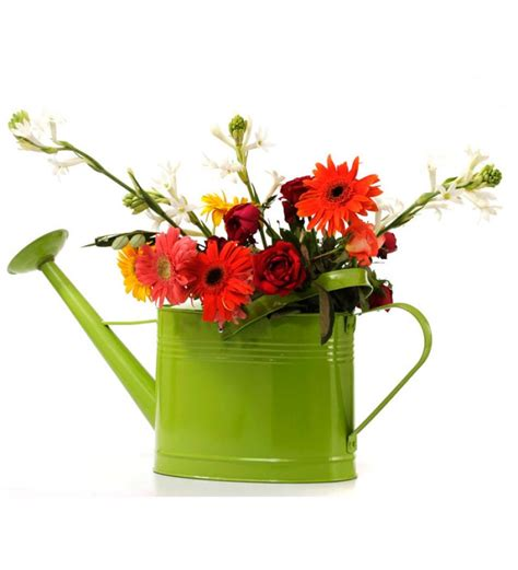 goyal india green watering can vase by goyal india