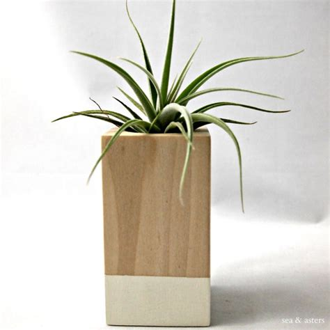 Oatmeal Wood Color Block Cube Container By Sea Asters Modern Indoor Planter