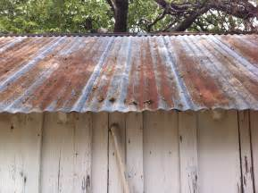 galvanized tin roof the cavender diary