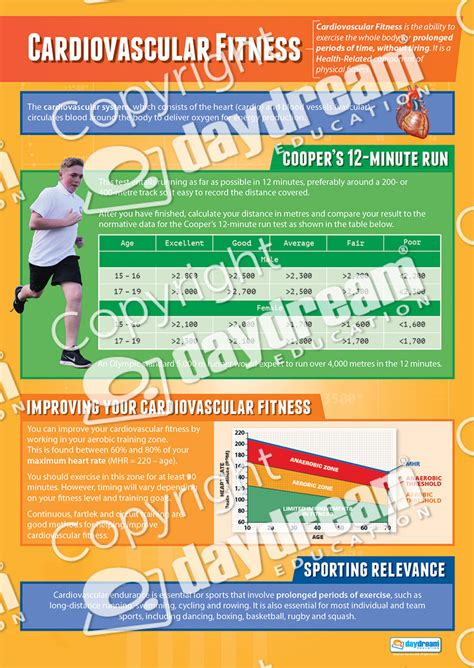 Cv Fitness Consulting Cardio Vascular Endurance Physical Education School Posters
