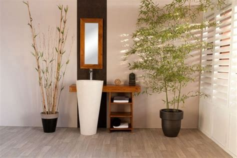 Plante Bambou Dans Salle De Bain by Am 233 Nager Un Cadre V 233 G 233 Tal Dans La Salle De Bain