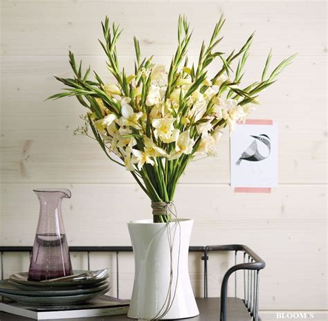 Gladiolen In Der Vase by Sommerzauber Ein Strau 223 Aus Gladiolen Tiziano
