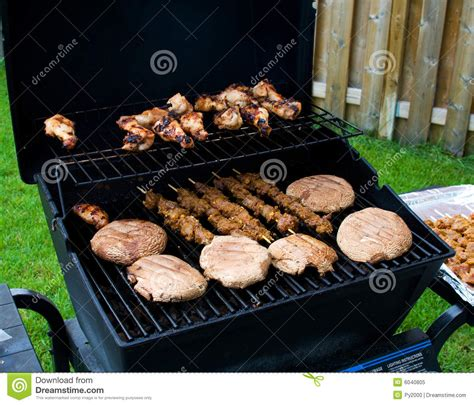 backyard bbq images backyard barbecue royalty free stock photo image 6040805
