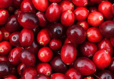 Cranberry Organic Buah Cranberry Organik 500gr foods organic cranberries