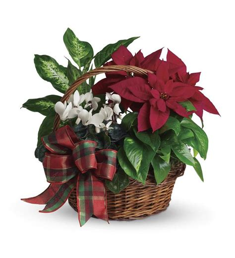 holiday homecoming basket t123 2a 52 16