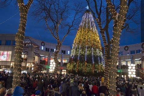 when was the first faneuil hall christmas tree blink faneuil marketplace