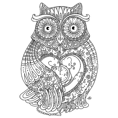 abstract owl coloring page corujas para colorir imagens png