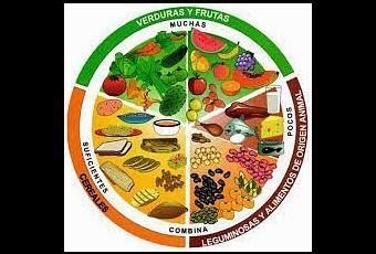 lista de alimentos con omega 3 alimentos con omega 3 paperblog