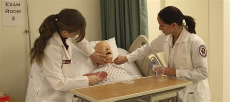 Accredited Nursing Schools In Arizona by Important Things To About Licensure Compact States