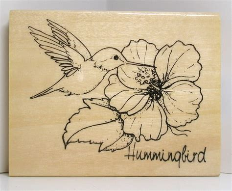 hummingbird rubber st hummingbird with hibiscus flower rubber st
