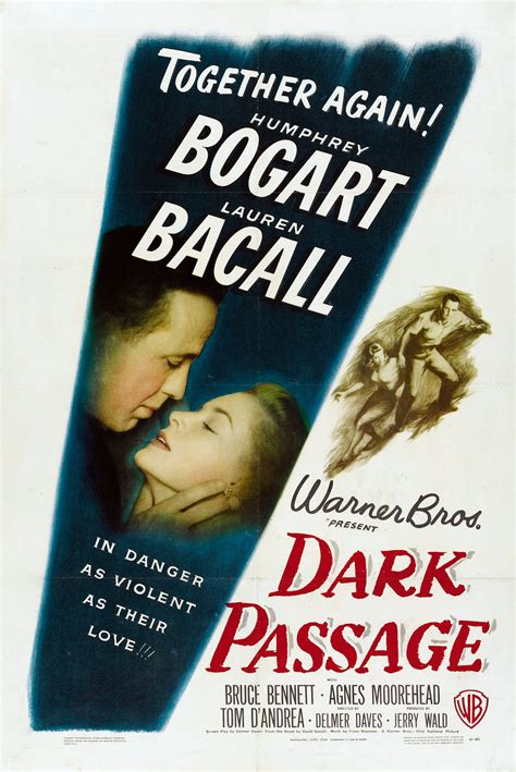dark posters dark passage