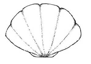 Clamshell Template by Clam Shell Vector Template Crafts