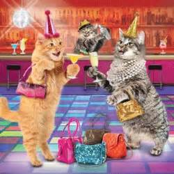 party cats birthday card 163 2 60 a great range of party