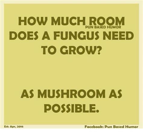 mushroom puns ideas  pinterest cute puns
