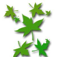 Wallpaper Daun Berguguran Bergerak | cara membuat efek daun berguguran bintang dan salju