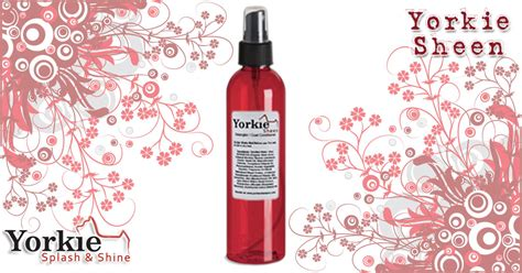 leave in conditioner for yorkies yorkie sheen detangling spray and leave in conditioner