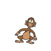 new year monkey animation image jumping monkey gif animation 1 gif survivor