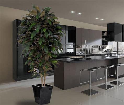 alberi da interni piante finte da interno piante finte come scegliere