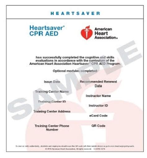 American Association Heartsaver Cpr Card Template by 15 3004 Heartsaver Cpr Aed Ecard