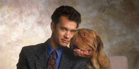 what of is turner and hooch 7 like turner hooch oddball animal antics itcher magazine