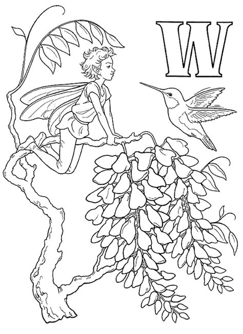 wood fairy coloring page coloriage alphabet fees 2 224 colorier allofamille
