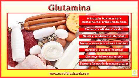 aminoacidos glutamina