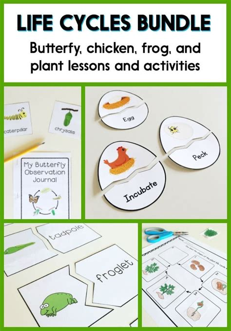 biography lesson plans for first grade 17 best ideas about materials science on pinterest