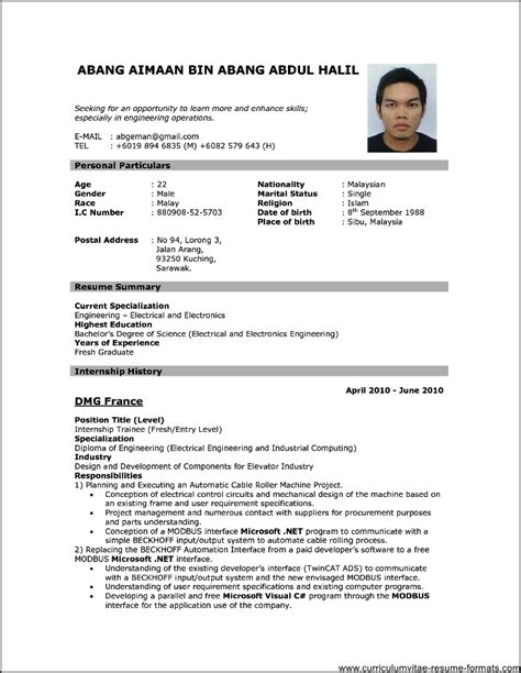 format of cv pdf professional resume format download pdf free sles