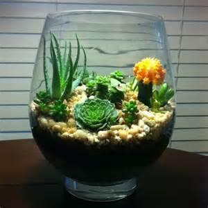 easy to make terrarium old fish bowl pea gravel perlite cactus soil your choice succulent