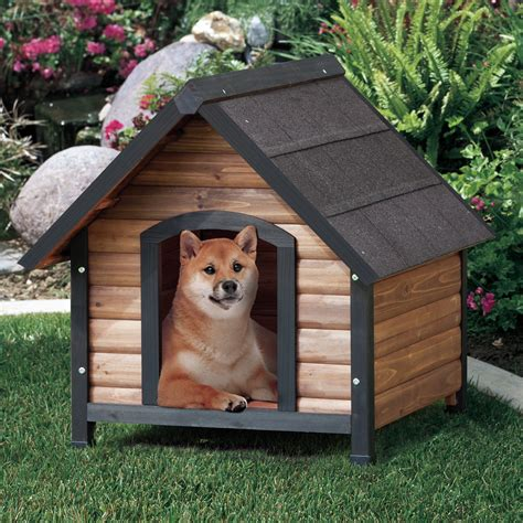 pet dog houses precision pet outback extreme country lodge dog house reviews wayfair